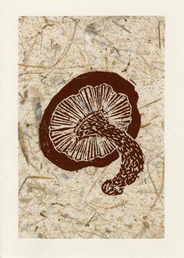 Mushroom Brown on Tan