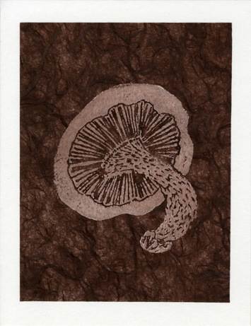 Mushroom Tan on Brown